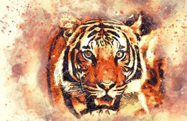 Wildlife tiger painting